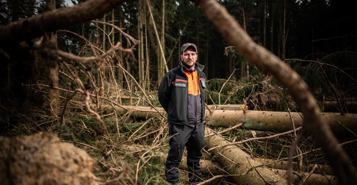 Der Wald-Manager