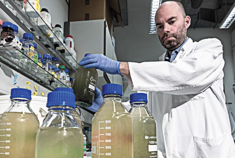 Abwassertest: COVID-19 Analyse